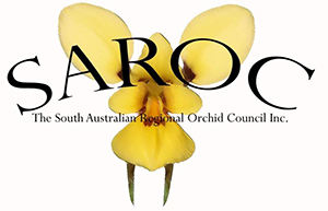 The South Australian Regional Orchid Council Inc.
